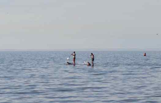 Stand Up Paddle west-vlaanderen